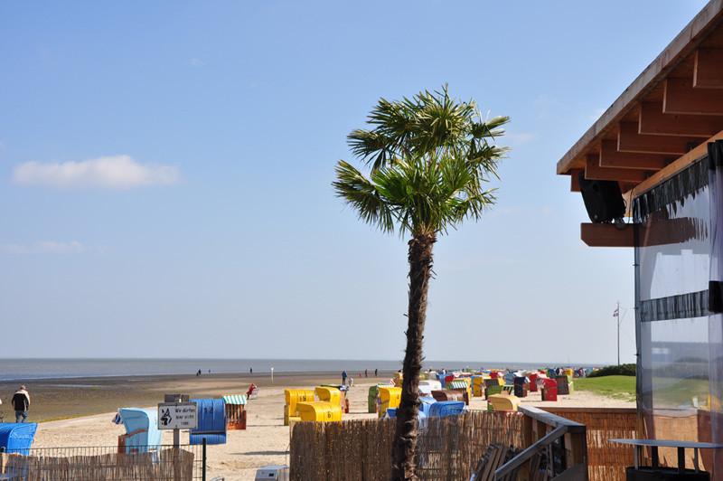 Ferienhaus Jade Dangast Der Strand